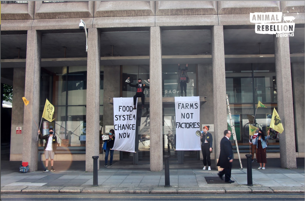 A photo from Animal Rebellion Ireland showing protestors holding flags and two banners outside an official building. The banners read: 'Food System Change Now' and 'Farms Not Factories'.