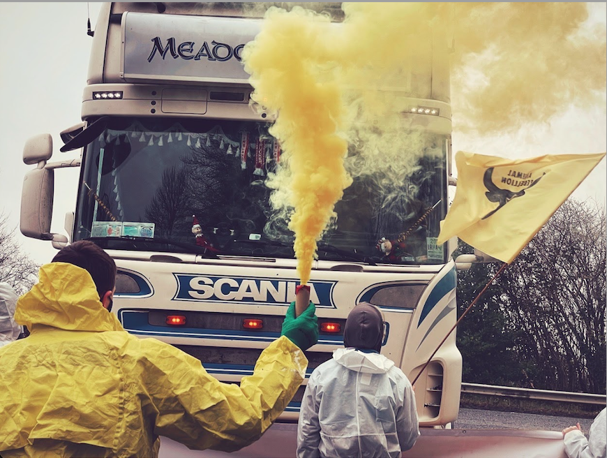 Two protestors block a large coach bus on the road: one on the left is wearing a bright yellow rain jacket and holding a small torch with neon yellow smoke coming out, while the one on the right raises a yellow-and-black Animal Rebellion flag.