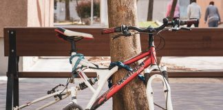 ID: The red and white frame of a racer bike locked to a tree. The wheels have been removed. In the background one can see a bench and a road.