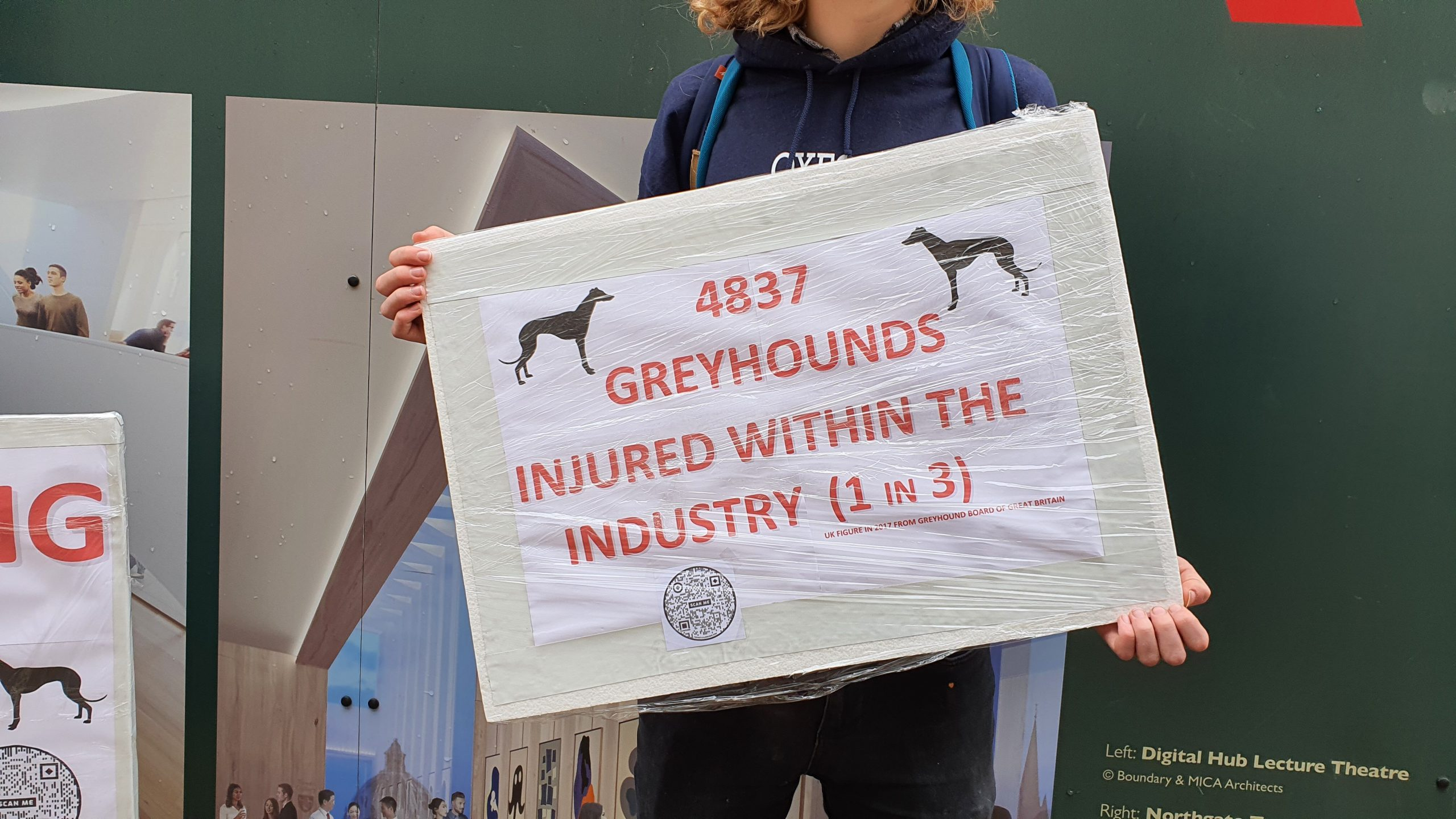 """A protester colds a sign reading """"4837 greyhounds injured within the industry (1 in 3)""""."""