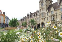 Flowers in front of Balliol College